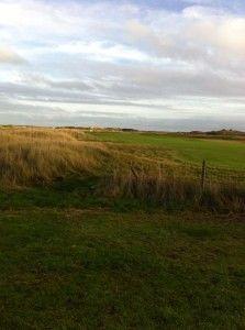 omgeving huisje golfbaan
